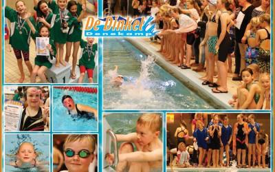 Alexander, Mariaschool en Kerkewei schoolzwemwinnaars van Dinkelland